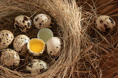Several quail eggs in a decorative nest made of straw on a wooden table close-up, copy space, top veiw