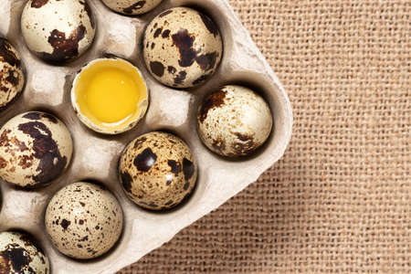 Quail eggs in cardboard packaging close-up, copy space, flatlay