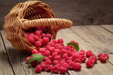 Ripe forest raspberries scattered from a small basket on a wooden table Stok Fotoğraf