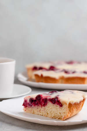 Homemade cake with cranberries and sour cream. Piece of pie close up. Vertical image