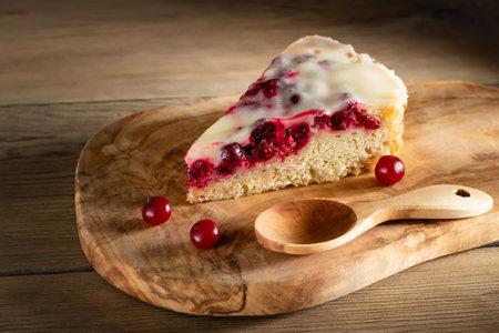 Homemade cake with cranberries and sour cream. Piece of pie close up Stok Fotoğraf