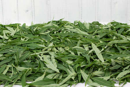 Harvesting fireweed for tea - drying laid out leaves