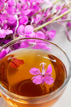Fireweed herb known as blooming sally and tea in a cup, vertical image