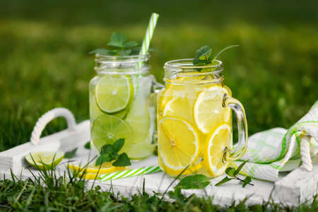 Cold refreshing homemade lemonade with mint, lemon and lime in mason jars on a summer lawn Banque d'images
