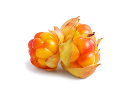 Three ripe cloudberries isolated on white background Banque d'images