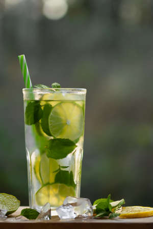 Cold refreshing homemade lemonade with mint, lemon and lime in a glass, copyspace, vertical image