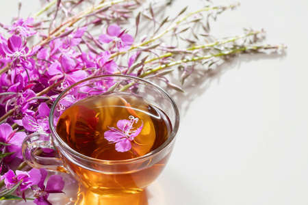 Fireweed herb known as blooming sally and tea in a cup 免版税图像