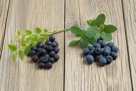 Two heaps of berries, biberries and blueberries, on a wooden table close-up