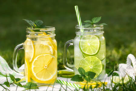 Cold refreshing homemade lemonade with mint, lemon and lime in mason jars on a summer lawn 免版税图像