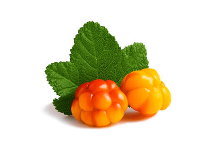 Two cloudberries with a leaf isolated on a white background with clipping path with and without shadow