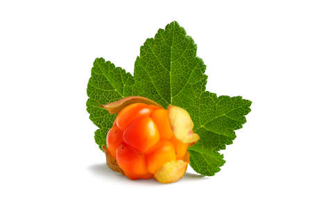 Cloudberry with leaf isolated on white background 免版税图像