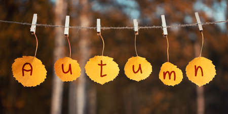 The word Autumn is written on the autumn leaves hanging from the rope. Autumn concept 免版税图像