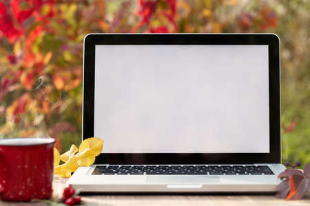 Laptop with blank screen on a table in the autumn garden. Template for ads, design, advertising 免版税图像