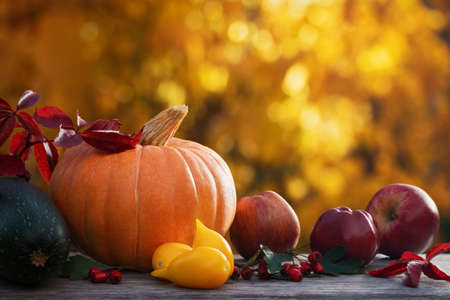 Autumn composition with pumpkin and other vegetables from the garden on a background of golden foliage