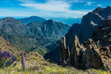 View of Caldera Taburiente vocanic area in La Palma 版權商用圖片 - 78597042