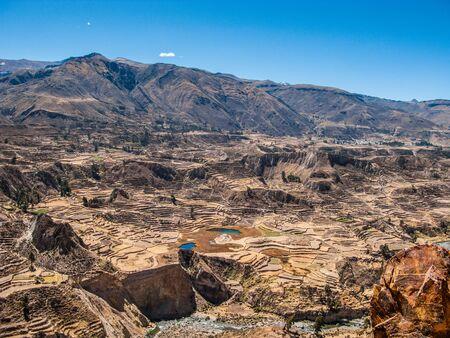 Incan terraced fields in Colca Valley, Peru