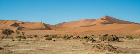 desiccated: Drought near Big Daddy dune in Namibia Stock Photo