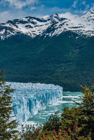 calafate: Perito Moreno glacier in a sunny day, Argentina