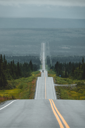 Long road through the forest, Alaska