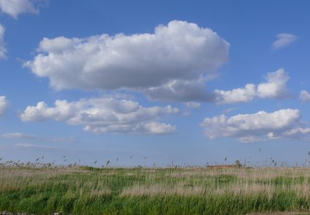 distant spot: beautiful landscape with green field and fluffy clouds