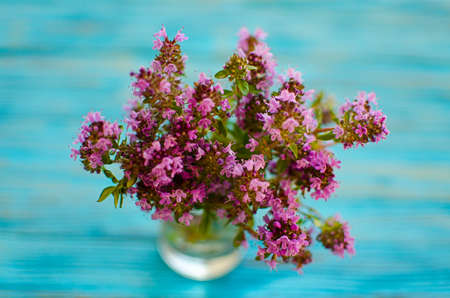Thyme is a genus of shrubs and semi-shrubs of the labiate family. Homeland are temperate regions of Greenland, Europe, North Africa, Asia
