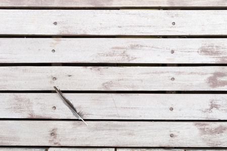 pluck: white brown rustic wooden floor. Background flat lay.