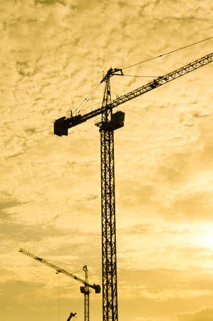 Industrial construction cranes  photo