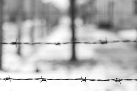 barred wire in Auschwitz concentration camp in black and white. blurred background