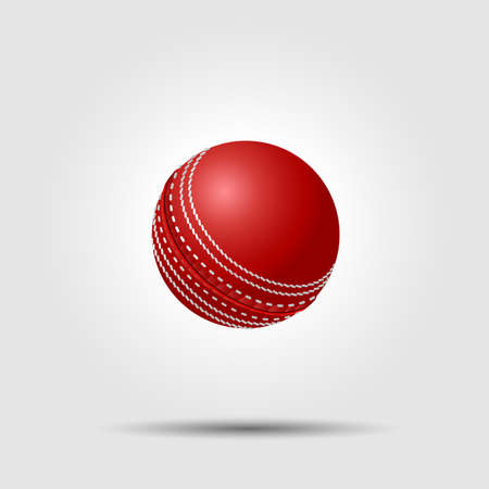 cricket: Cricket ball on white background with shadow