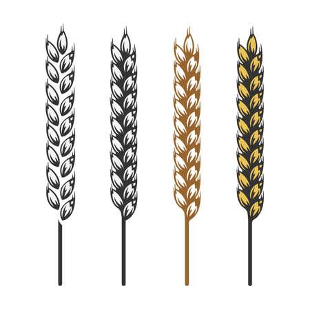 bran: Wheat, barley, rye bread craft bakery icon