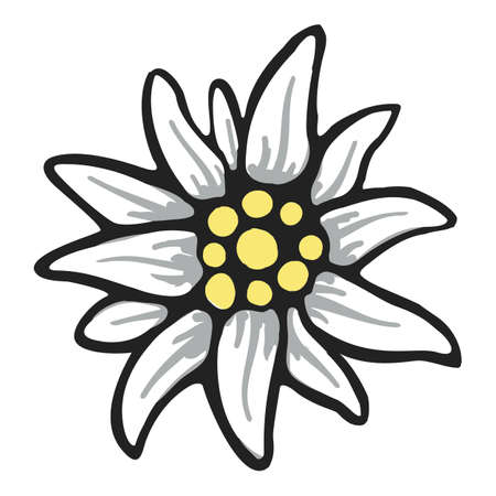 edelweiss flower symbol alpinism alps germany logo set