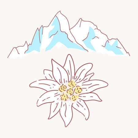 edelweiss mountains mountaineering flower symbol alpinism alps germany logo