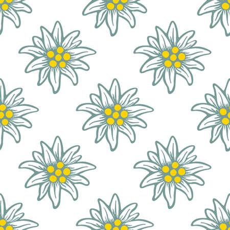 edelweiss flower icon vector alpine pattern, seamless, tile, background 矢量图像