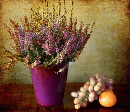 floristics: orange,  grapes and a blooming heath on a wooden table and on a grunge background