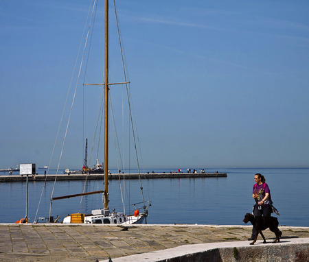rive: Trieste, Italy -  Woman walks with her dog on Trieste waterfront, called Le Rive,  with the view of Molo Audace pier