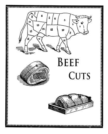 slaughter: Collage of engravings describing the butcher beef cuts and the art of preparing meat to roast