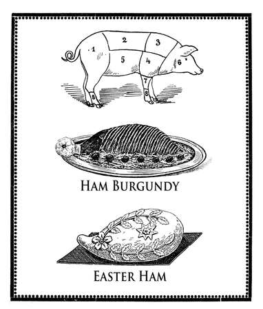 engravings: vintage food engravings collage, pork numbered cuts, ham burgundy presentation and easter ham in decorated dough