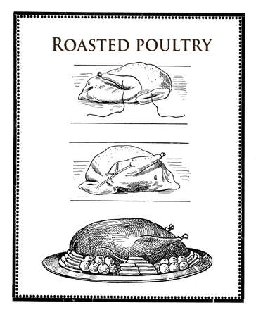 engravings: vintage food engravings collage, roasted poultry preparation and table presentation