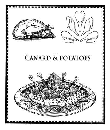 canard: Vintage cuisine illustration collage, roast canard with potatoes and poultry cuts and sections