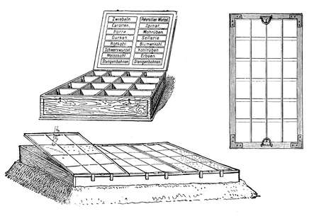 sowing: Horticulture and sowing vintage illustration, small greenhouse with detail of glas window and seed box with plant labels