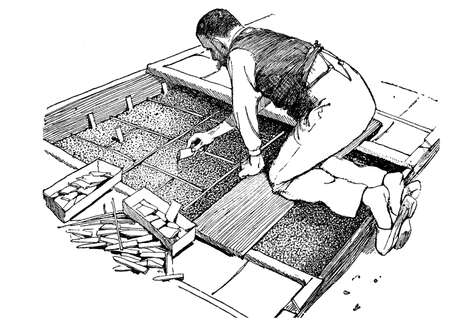 sowing: Horticulture illustration, farmer hand sowing plants in a small greenhouse Stock Photo