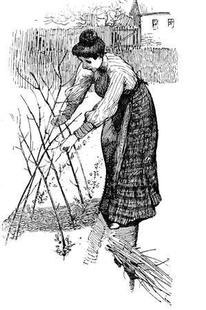 arranging: Lady farmer arranging branches in the ground outside a farmhouse