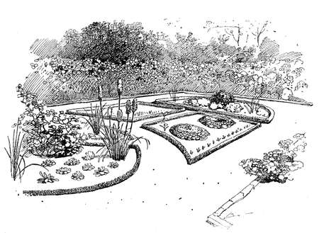 engravings: Ornamental garden illustration.Ornamental gardens use plants designed more for Their aesthetic pleasure and appearance, flowering plants and bulbs in addition to foliage plants, ornamental grasses, shrubs and trees.