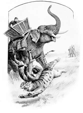 elephant angry: Adventures in the wilderness, hunter falls from the elephant on the angry tiger. Shall he survive?