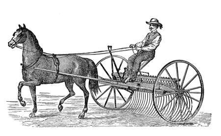 rake: Antique illustration, agriculture: horse carting a rake carriage