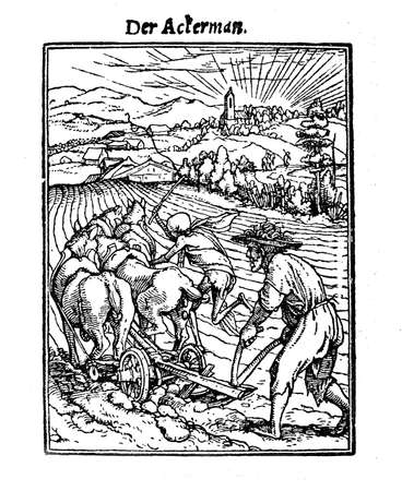 XV century, Death as the plower, illustration inspired to Hans Holbeins Totentanz (La danse macabre, a collection of 40 woodcuts): a deceivingly bucolic scene aggrieved by a Death-like figure wipping the horses.