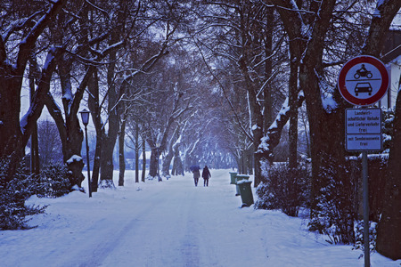 Winter urban landscape: couple walk on foggy alley covered by snow flanked by trees Stock Photo