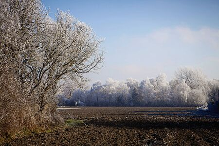 Winter Bavarian landscape,field and frozen trees with iced white leaves Stock Photo - 71187409