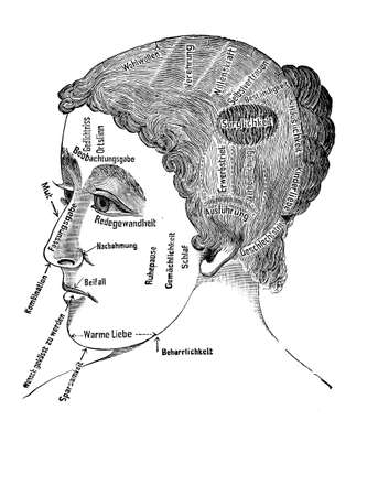 pseudoscience: Alternative and pseudo-medicine: phrenology women cart  about the brain localization of mental functions and facial characteristic, vintage engraving