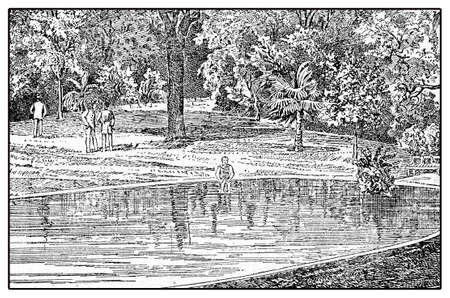 sanatorium: Sanatorium fishpond, vintage illustration of one of the many private health establishment in Germany in XIX century Stock Photo
